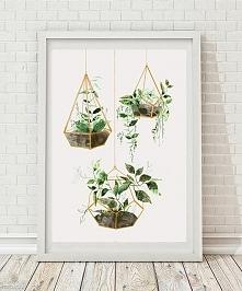 ilustracja botaniczna | A3