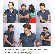 Oh, Tom. xD