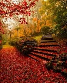 Ogród Breenhold - Australia.
