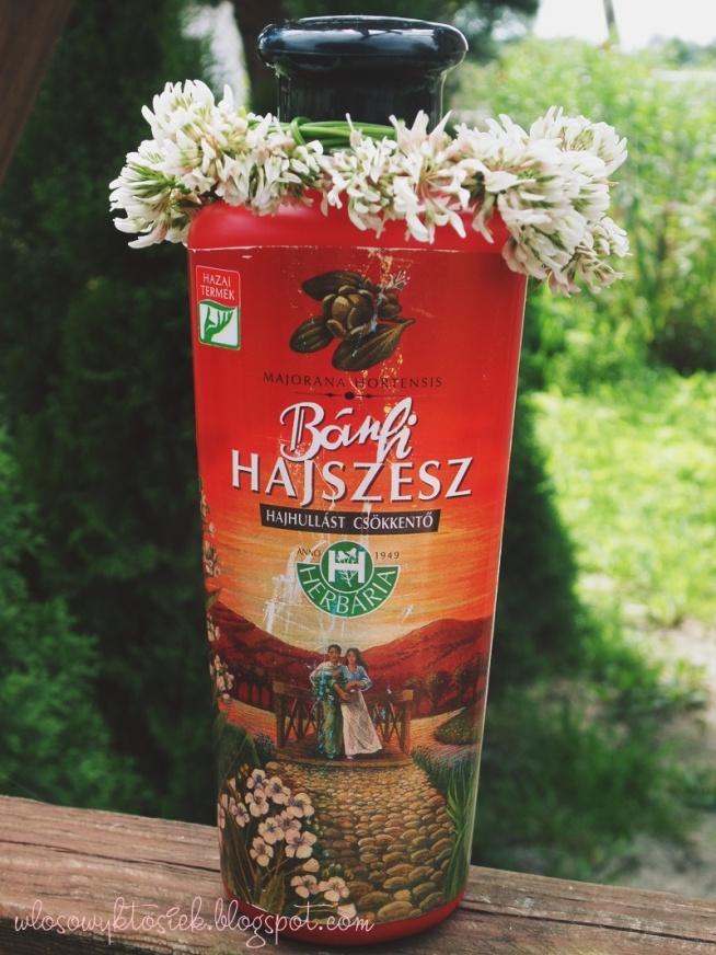 Wcierka na porost włosów Banfi Hajszesz to węgierski produkt i jest produkowany od 1949 roku, lecz od niedawna został spopularyzowany w świecie włosomaniaków. A przyczyniła się do tego Agnieszka Niedziałek z bloga wwwlosy.pl, którą serdecznie pozdrawiam. :) Wcierka nie potrzebowała dużo czasu, aby skraść serca i stać się hitem. Czy mnie również zachwyciła? Zapraszam na recenzję! wlosowyktosiek.blogspot.com lub klik w zdjęcie :)
