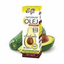 DRZEWO AWOKADO /Persea Scheffer/  Drzewo avocado pochodzi z południowego Meks...
