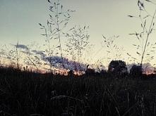 Relaks, zachód słońca, trawa,  leniuchowanie ❤️❤️❤️
