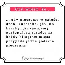 pytajnikdomowy.pl