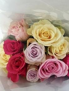 Bo kto nie kocha róży...