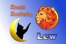 LEW – ZNAK ZODIAKU (23 lipca – 22 sierpnia)  Hasło astrologiczne: TWORZĘ  Cec...