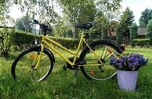 Moj odnowiony rower, pomalowany na żołto i czarnym MATOWYM kolorem!