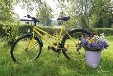 Moj rower pomalowany na żółto. I MATOWYM czarnym kolorem!