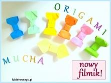 Nowy filmik z muchą origami w roli głównej - już do obejrzenia na kanale Lubię Tworzyć (lubietworzyc.pl)