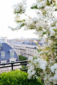 Piękny widok za oknem w okresie letnim *.*