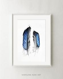 Pióra #02- plakat, reprodukcja 30x40cm