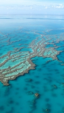 Great Barrier Reef, Queensl...