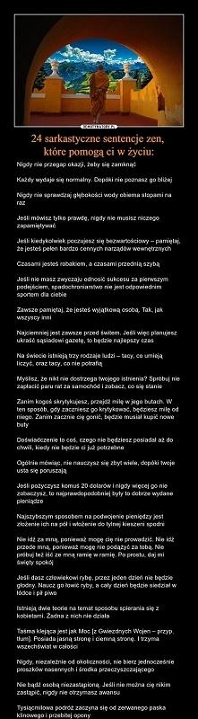 Robak - Szyba :D