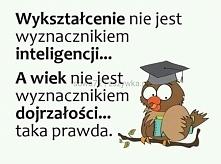 Wykształcenie nie jest wyznacznikiem inteligencji...