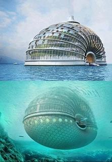 Hotel Arka w Chinach