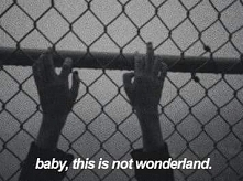 baby, this is not wonderland.