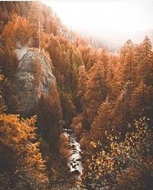 jesień tuż tuż