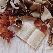 Po więcej jesiennych inspiracji zapraszam na bloga curleymiki.blogspot.com
