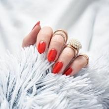 fixation.pl na Instagramie: Poniedziałek :( Zaraz zbieram się do pracy. Jedyne co mnie pociesza to ta piekna czerwień na paznokciach - Golden Rose Rich Color nr 56 <3
