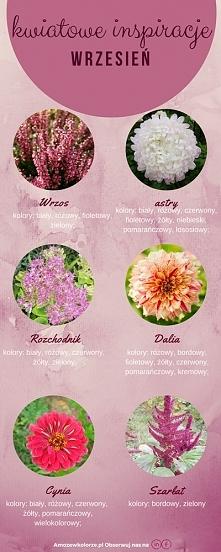 Kwiaty kwitnące we wrześniu, które można wykorzystać do dekoracji ślubu i wes...