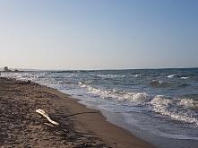 Morze Argentyńskie ♥ Najlep...