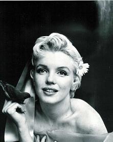 Piękna Marilyn