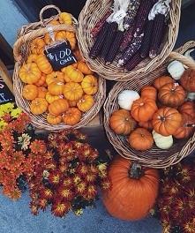 ah ta jesień ..