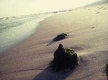 polskie morze po sezonie. kocham wrzesień