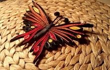 Dalszy ciąg nauki quilling'u. Motyl skonczony. Jeszcze tylko musi klej wyschnąć:)
