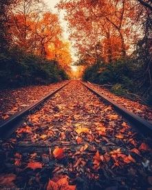 #jesień #wieczornyspacer Przepiękne widoki! Czasem gdy mam czas spaceruję sob...