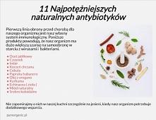 11 najpotężniejszych, naturalnych antybiotyków.