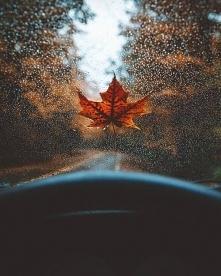 Długie, samochodowe wycieczki w deszczu