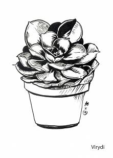Inktober day 10 - succulent