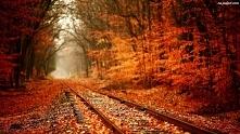 Jesień to najpiękniejsza pora roku która swoimi kolorami kusi do długich spacerów.