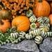 Jesień to czas Halloween, a...