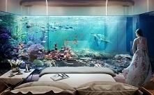 Ciekawe czy ktoś by tu zasnął?