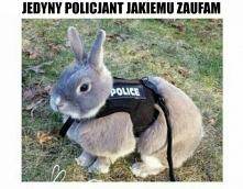 Nawet dam się aresztować