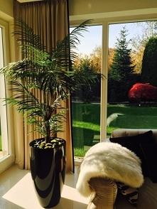 Sztuczna palma z naszej pra...