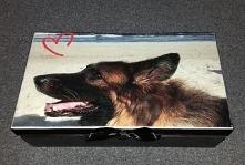 Skrzynka z piernikami dla miłośniczki psów, na wieku pies solenizantki.