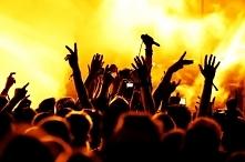 kto koncertuje ? jakieś ciekawe propozycje ?