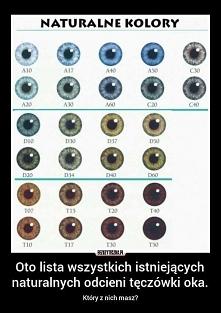 Kolory oczu. 120 albo 130 t...