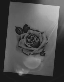 realistic rose