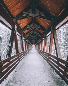 Snow***
