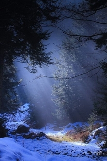 Somewhere...
