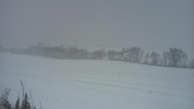 Taki śnieg i tylko na sanki :D