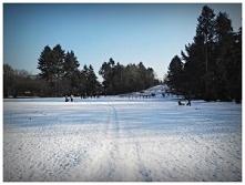 wrocławski Park Grabiszyński zimą