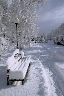 A śnieg chociaż często problematyczny, to ma w sobie coś wyjątkowego. Nie ma żadnego ograniczenia wiekowego żeby się w nim bawić, rzucanie się ścieżkami czy lepienie bałwana no ...