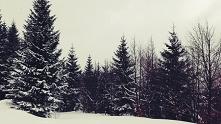 uwielbiam śnieg na święta i uwielbiam wtedy jeździć w tedy w rodziną na wycieczki w góry