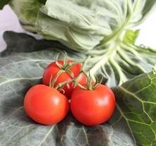 Młoda kapusta duszona w pomidorach :)