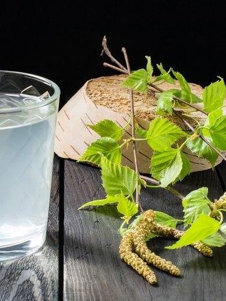 """Sok z brzozy Pozyskiwany z pnia, ale też z pąków czy liści brzozy sok można śmiało nazwać eliksirem zdrowia i zaliczyć do grona najlepszych napojów leczniczych. Doskonale zastąpi popularną aspirynę czy izotonik i jak przystało na prawdziwą """"bombę witamin"""" postawi na nogi każdego anemika, szybko uzupełniając zapotrzebowanie na niezbędne składniki. Ponadto błyskawicznie oczyści organizm z toksyn, pozwoli pozbyć się nadwagi, zapewni skuteczną ochroną przed rozmaitymi infekcjami i złagodzi bóle reumatyczne. Przypisuje się mu też antynowotworowe działanie. Pijąc szklankę soku dziennie możemy uzupełnić wszelkie niedobory witamin i minerałów oraz zapobiec odwodnieniu organizmu."""
