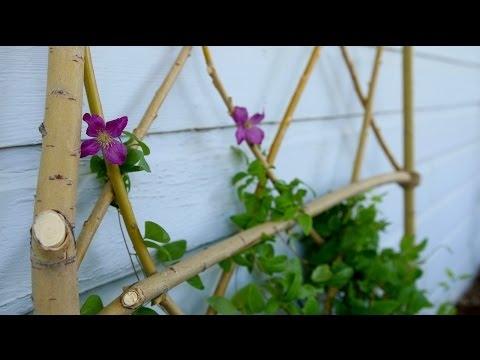 DIY Willow Branch Trellis // Garden Answer  Kratka z gałęzi wierzby